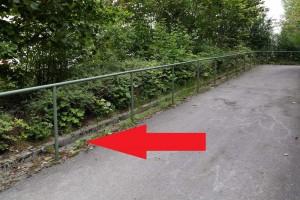 Möglicher direkter Zugang von der Rampe zum Parkplatz. (Foto: Peter Pernsteiner)