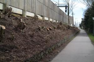 Lärmschutzwand westlich des Bahnhofs Zorneding (Foto: Peter Pernsteiner)